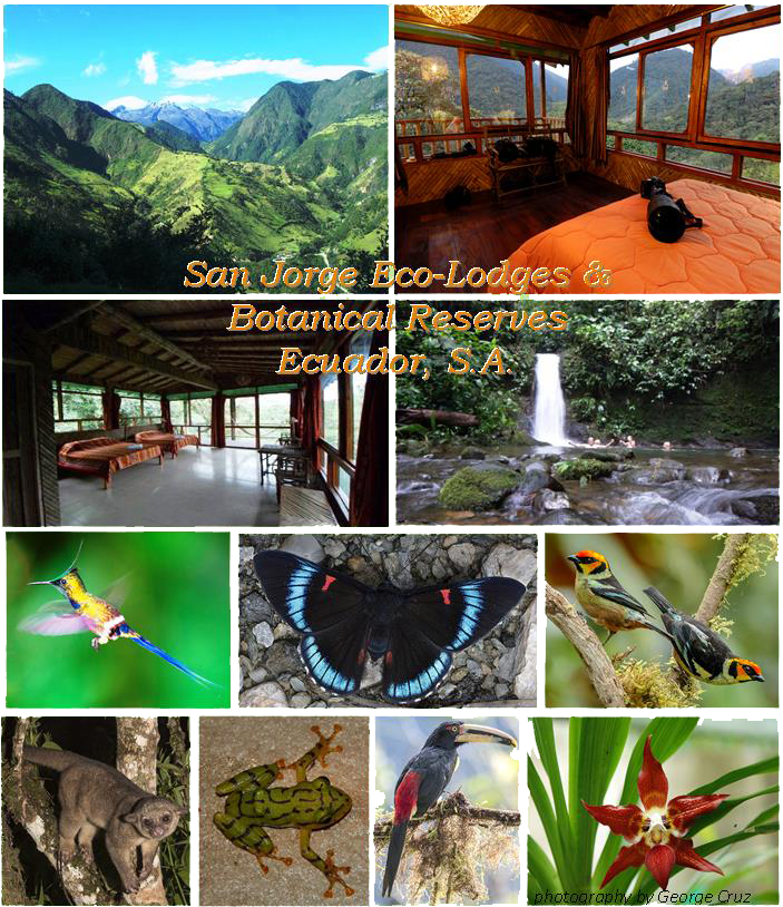 Ecuador Eco-Tours for Nature Lovers ~ San Jorge Eco-lodge